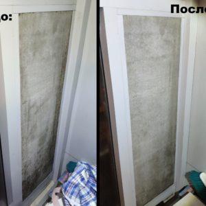Удаление черной плесени в квартире и доме
